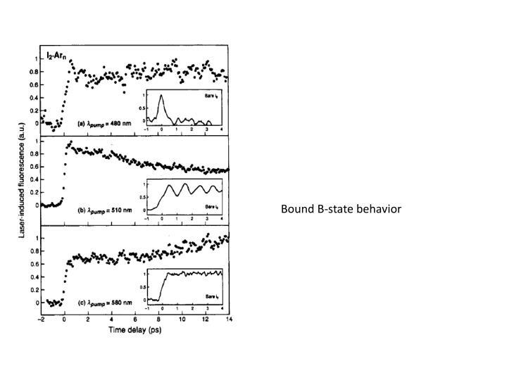 Bound B-state behavior