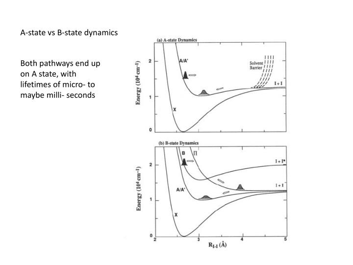 A-state vs B-state dynamics