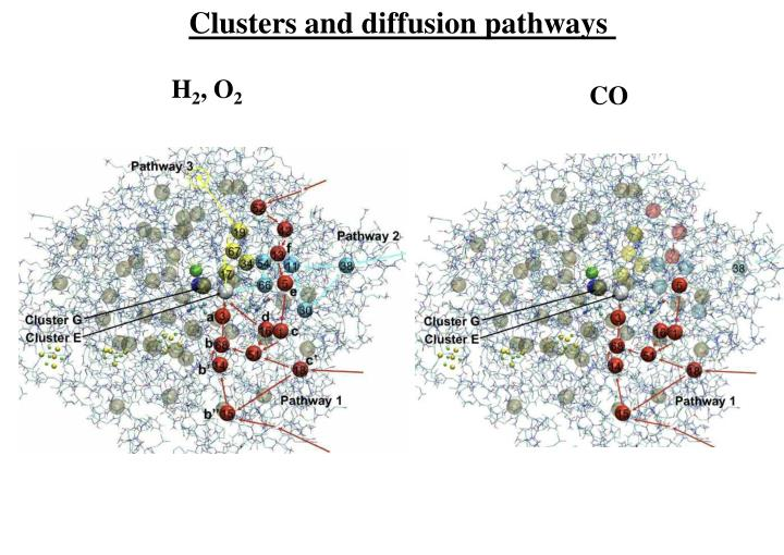 Clusters and diffusion pathways