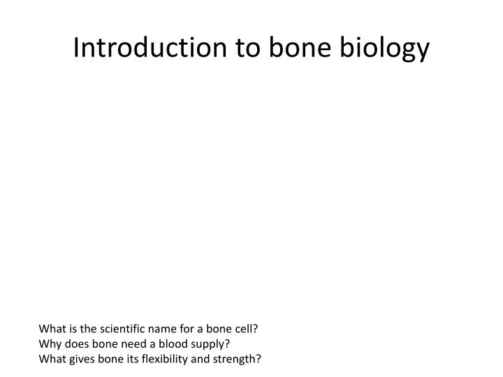 Introduction to bone biology