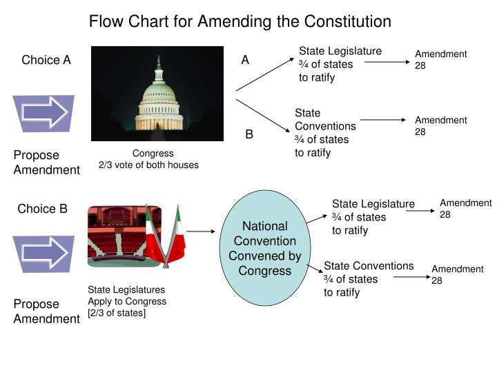 PPT - Flow Chart for Amending the Constitution PowerPoint ...