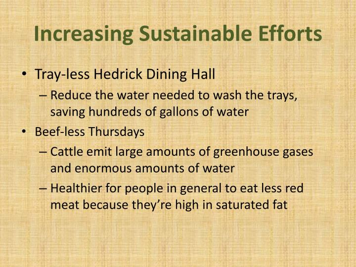 Increasing Sustainable Efforts