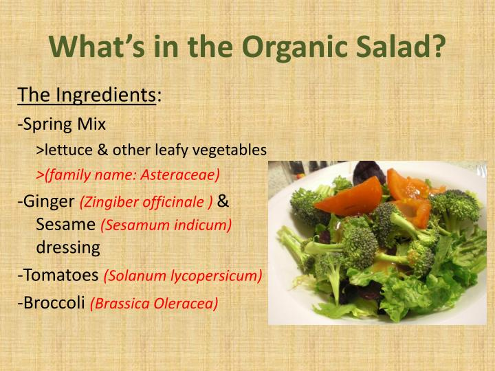 What's in the Organic Salad?
