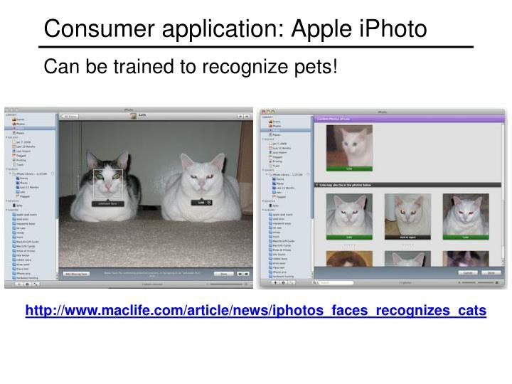 Consumer application: Apple