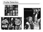 profile detection
