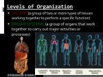 levels of organization1