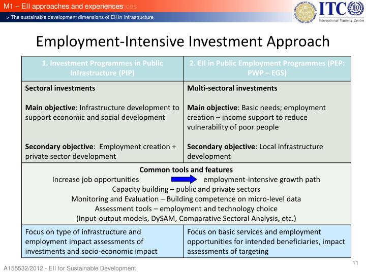 Employment-Intensive Investment Approach