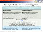 employment intensive investment approach
