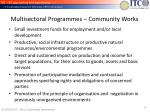 multisectoral programmes community works