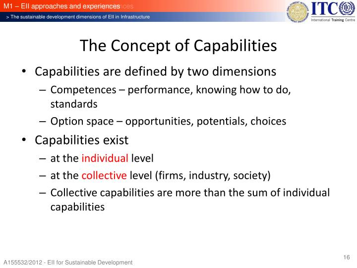 The Concept of Capabilities