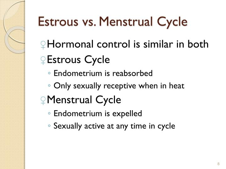 Estrous vs. Menstrual Cycle