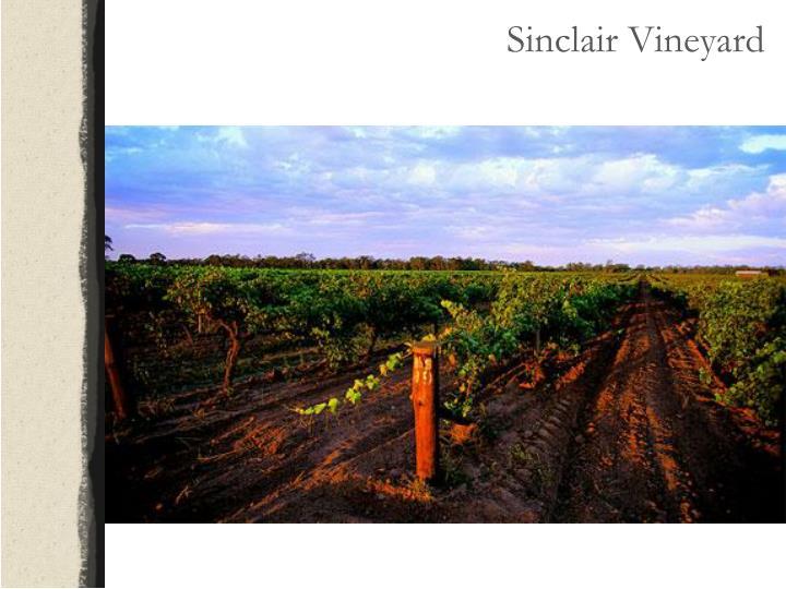 Sinclair Vineyard