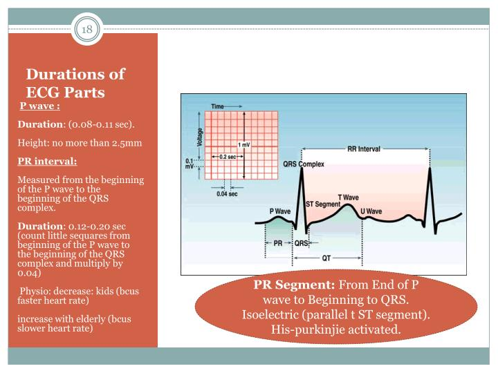 Durations of ECG Parts