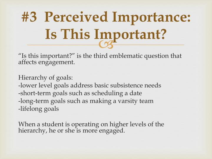 #3  Perceived Importance:  Is This Important?