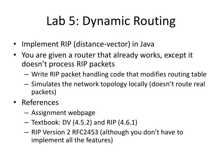 Lab 5: Dynamic Routing