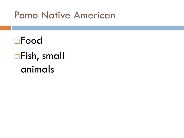 Pomo Native American