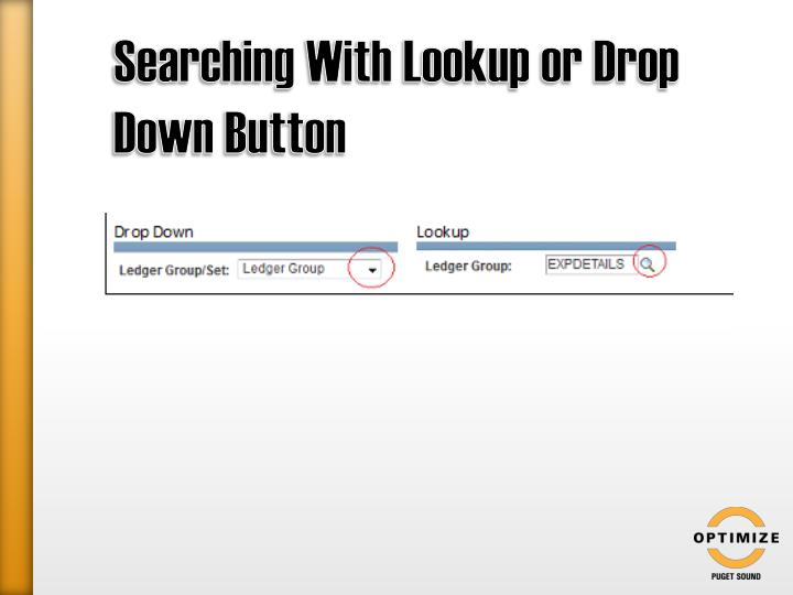 Searching With Lookup or Drop Down Button
