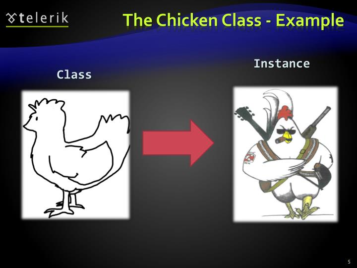 The Chicken Class - Example