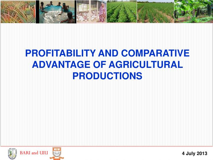 PROFITABILITY AND COMPARATIVE ADVANTAGE OF AGRICULTURAL PRODUCTIONS