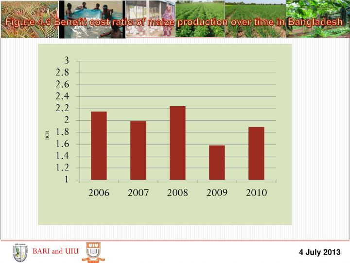 Figure 4.6 Benefit cost ratio of maize production over time in Bangladesh