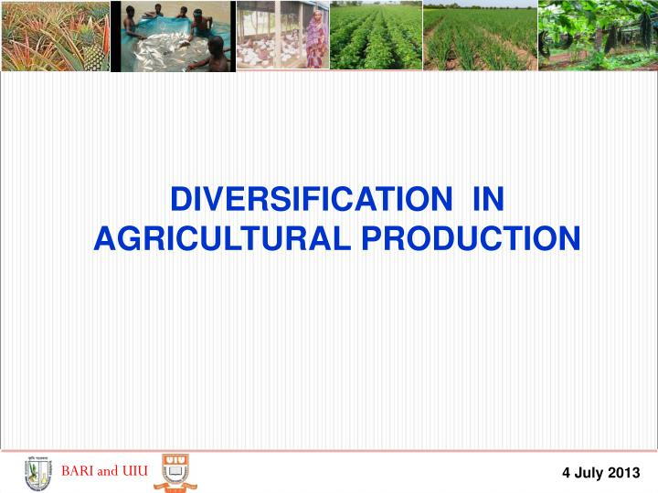 DIVERSIFICATION  IN AGRICULTURAL PRODUCTION