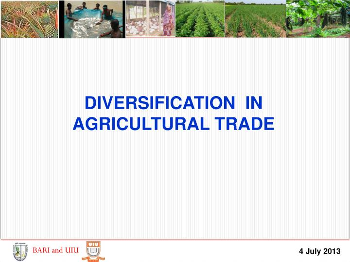 DIVERSIFICATION  IN