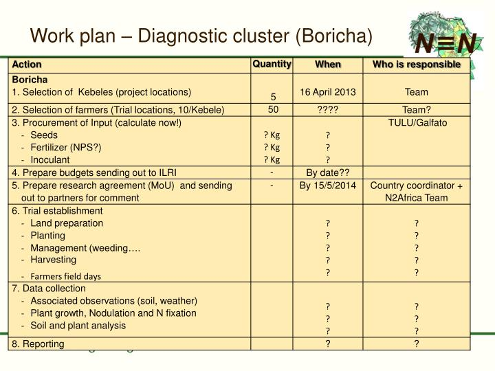 Work plan – Diagnostic cluster (