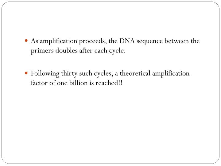 As amplification proceeds, the DNA sequence between the primers doubles after each cycle.