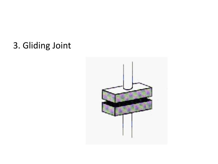 3. Gliding Joint