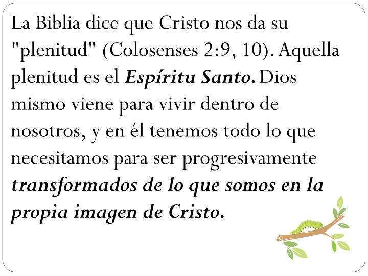 """La Biblia dice que Cristo nos da su """"plenitud"""" (Colosenses 2:9, 10). Aquella plenitud es el"""