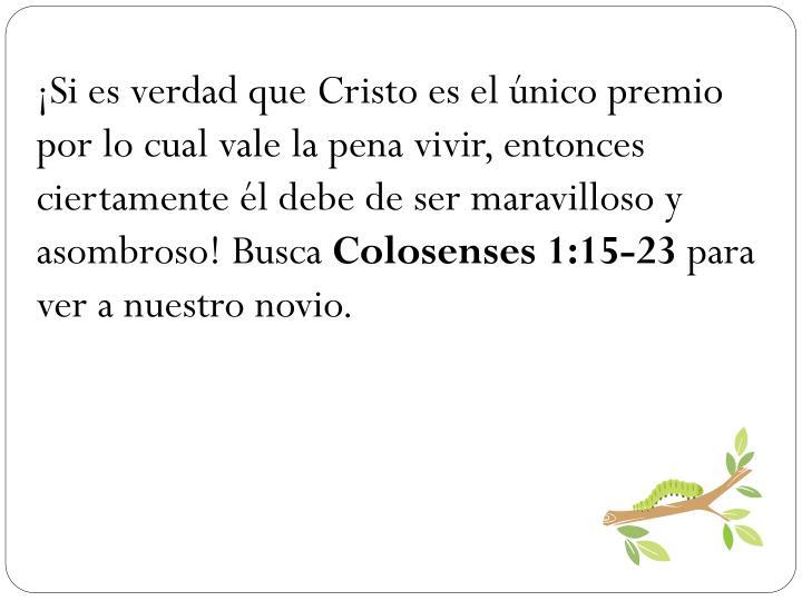 Si es verdad que Cristo es el nico premio por lo cual vale la pena vivir, entonces ciertamente l debe de ser maravilloso y asombroso! Busca