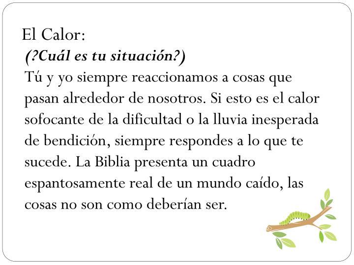 El Calor: