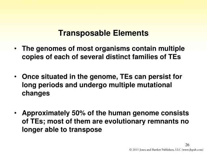 Transposable Elements