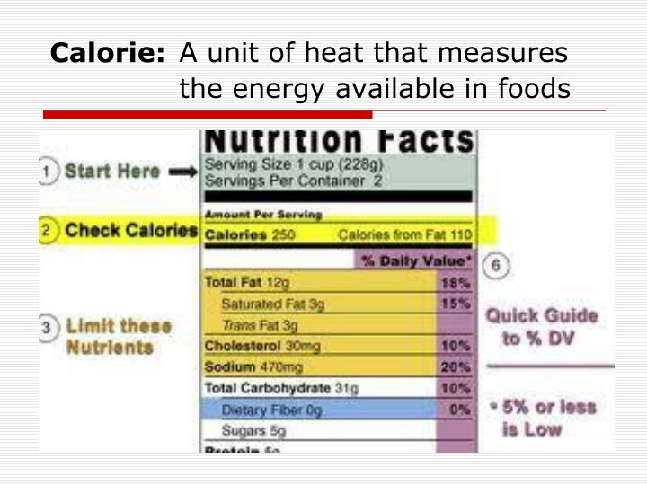 A unit of heat that measures the energy available in foods