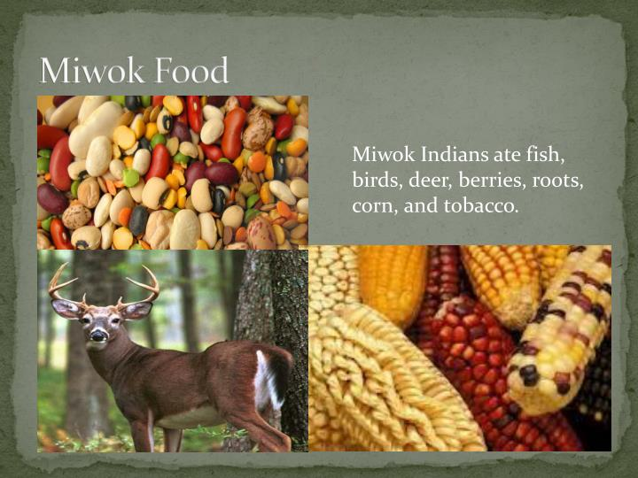 Miwok Food