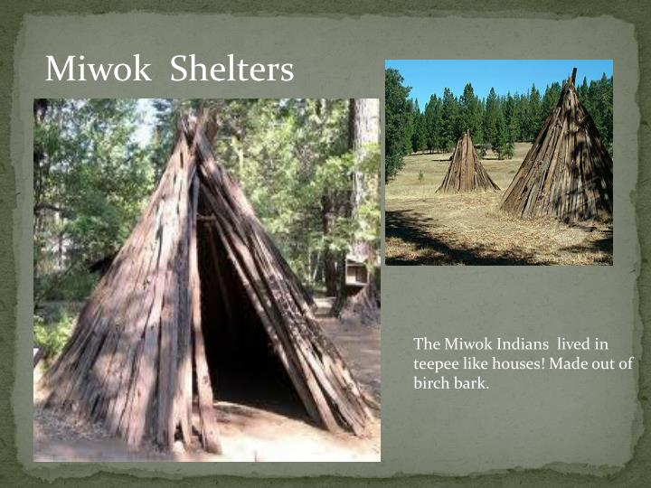 Miwok  Shelters
