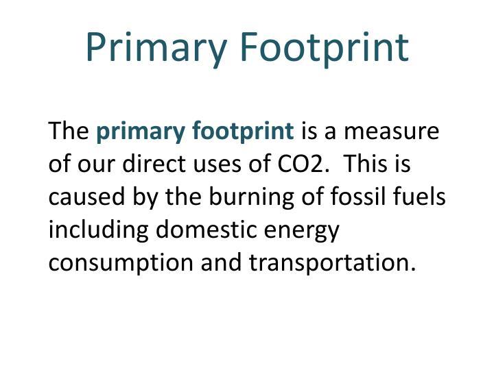 Primary Footprint