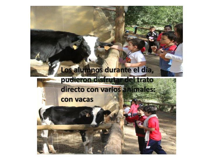 Los alumnos durante el día, pudieron disfrutar del trato directo con varios animales: con vacas
