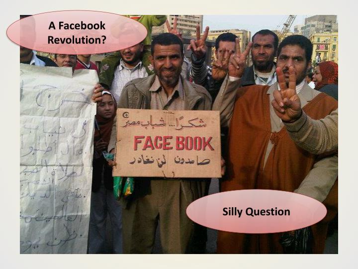 A Facebook Revolution?