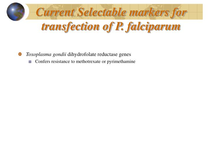 Current Selectable markers for transfection of P. falciparum