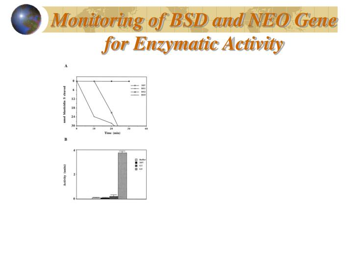 Monitoring of BSD and NEO Gene