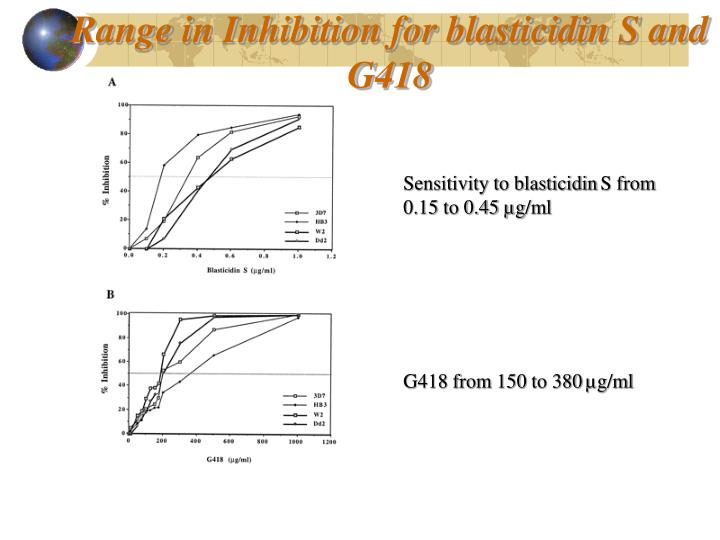 Range in Inhibition for blasticidin S and G418