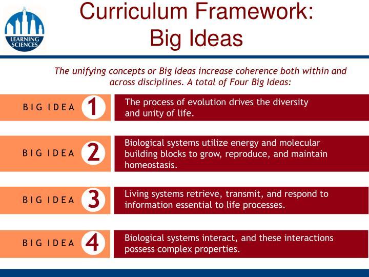 Curriculum Framework: