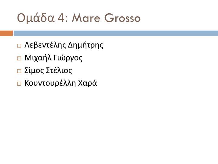 Ομάδα 4: