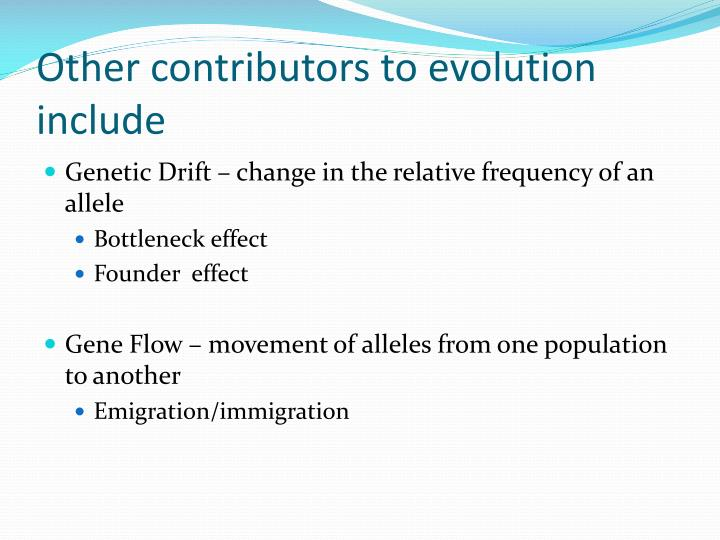 Other contributors to evolution include