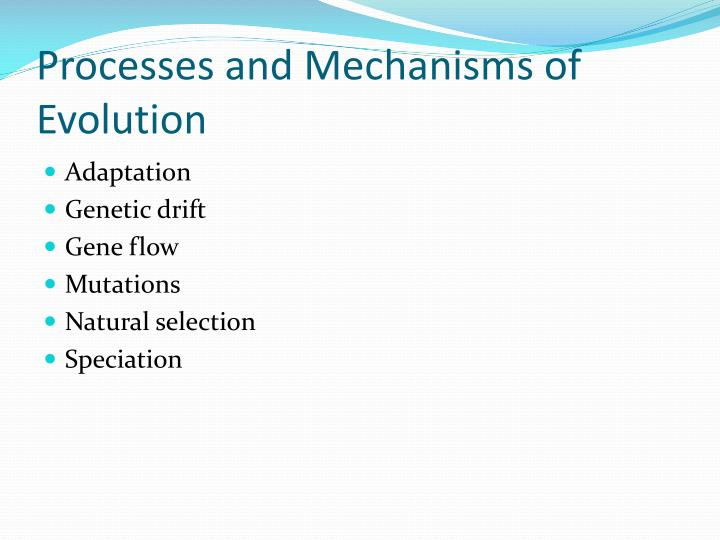 Processes and Mechanisms of Evolution