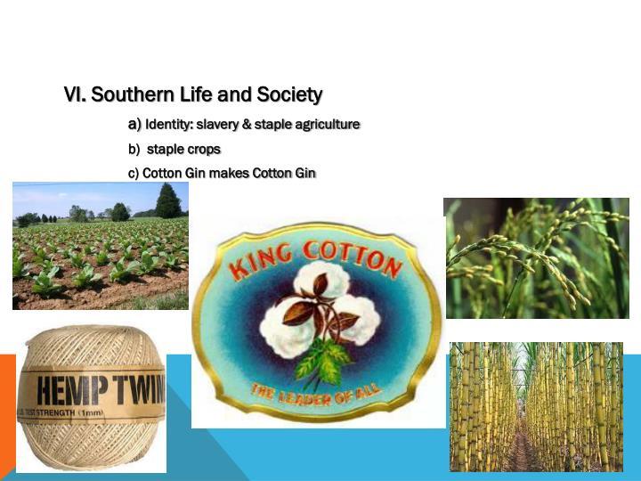 VI. Southern Life and