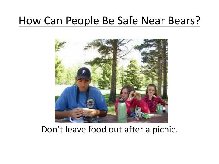 How Can People Be Safe Near Bears?