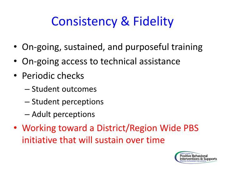 Consistency & Fidelity