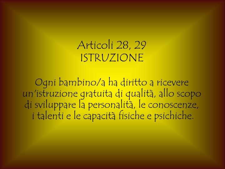 Articoli 28, 29